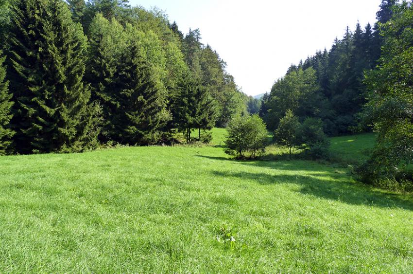 images/Natur_Slide/Natur_015.jpg