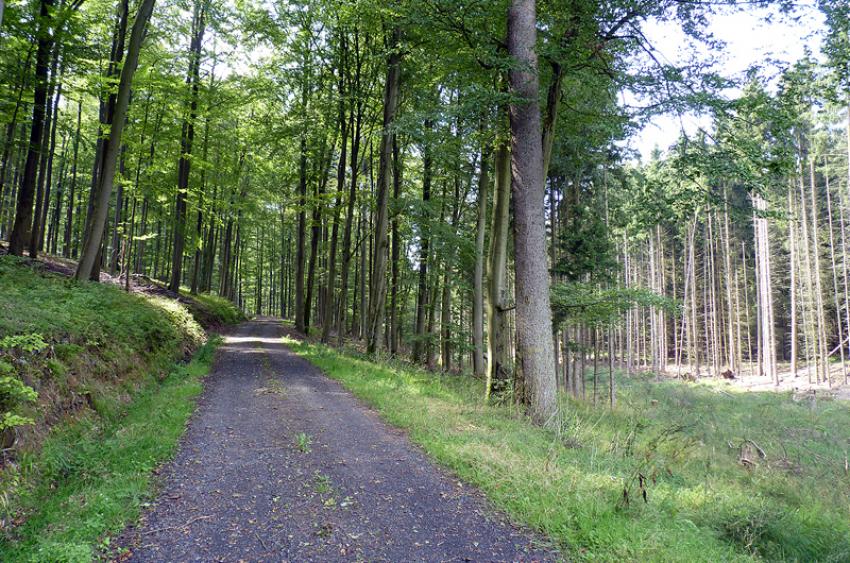 images/Radfahren_Slide/Radfahren_007.jpg